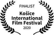 Finalist, Kosice International Film Festival